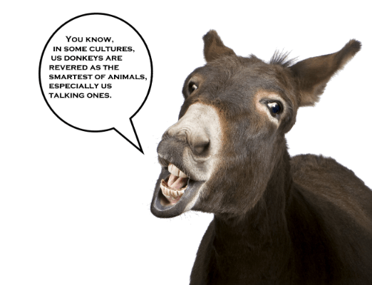 In some cultures, Us Donkeys are revered as the smartest of animals. Especially us talking ones.