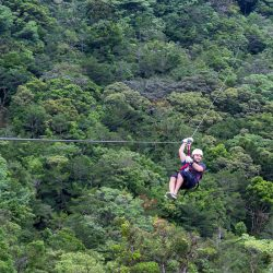 Young man glides across jungle canopy on Zip Line Canopy Tour